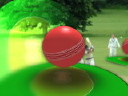 Royalty Free Video of Cricket Players and a Ball