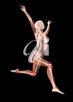 3D render of a female medical skeleton jumping with leg joints highlighted