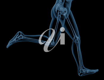 3D render of close up of a medical skeleton legs running