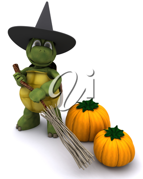 3D Render of a tortoise dressed as a witch for halloween
