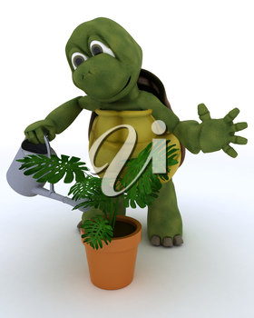 3D render of a tortoise with  watering can feeding a plant
