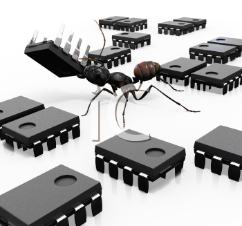 Royalty Free Clipart Image of Ants carrying microchips.