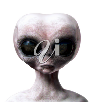 Grey alien portrait front view isolated on white