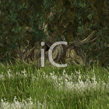 Royalty Free Clipart Image of a Forest