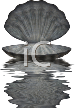 Royalty Free Clipart Image of an Open Oyster Shell Reflected in Water