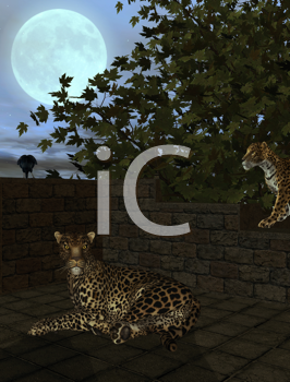 Royalty Free Clipart Image of Leopards and Crows Under a Full Moon