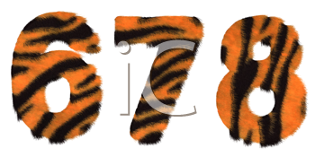 Royalty Free Clipart Image of Tiger Fell Numbers