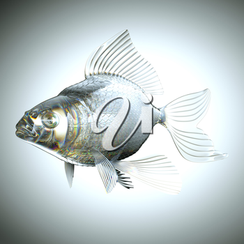 Glassy fish with scales and fins over grey