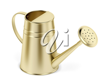 Gold watering can on white background