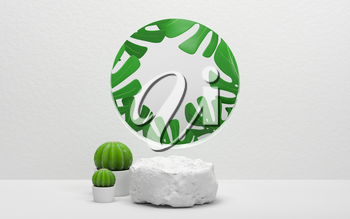 Cactus and monstera with white background , 3d rendering. Computer digital drawing.