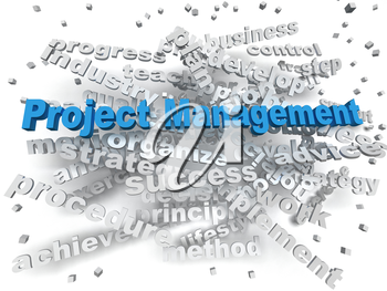 3d image Project Management  word cloud concept