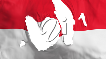 Ragged Monaco flag, white background, 3d rendering