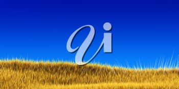 Royalty Free Clipart Image of a Wheat Field