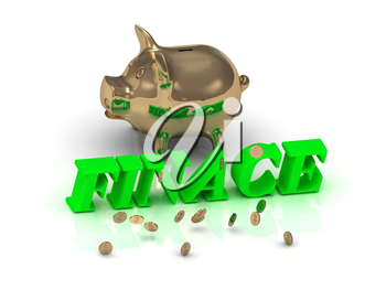 FINACE- inscription of green letters and gold Piggy on white background