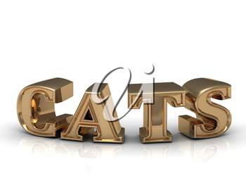 CATS - inscription of bright gold letters on white background