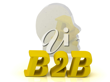 B2B - bright color letters and silver head mind on a white background