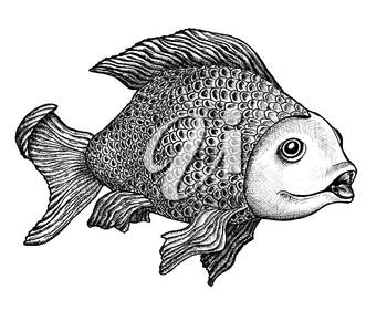 Royalty Free Clipart Image of a Hand Drawn Fish