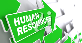Human Resources. Business Concept. Green Arrow with Human Resources Slogan on a Grey Background. 3D Render.