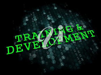 Training and Development. Business Educational Concept. The Word in Light Green Color on Dark Digital Background.