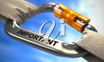 White Ropes Connected by Chrome Carabiner Hook with Text Important. Selective Focus. 3D Render.