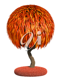 Decorative Autumn Tree with Glossy Round Krone Isolated on White Background.