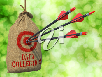 Data Collection - Three Arrows Hit in Red Target on a Hanging Sack on Green Bokeh Background.