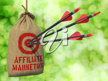 Affiliate Marketing - Three Arrows Hit in Red Target on a Hanging Sack on Green Bokeh Background.