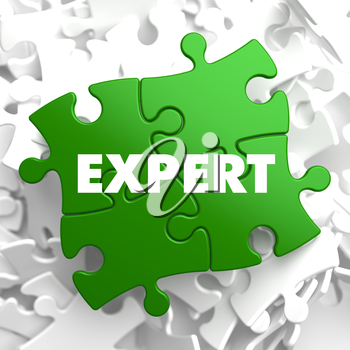 Expert on Green Puzzle on White Background.