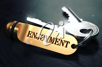Keys and Golden Keyring with the Word Enjoyment over Black Wooden Table with Blur Effect. Toned Image.