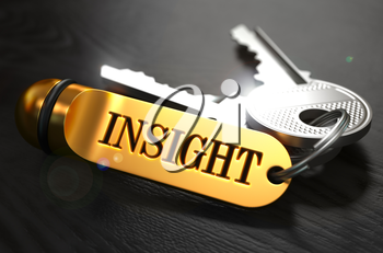 Keys with Word Insight on Golden Label over Black Wooden Background. Closeup View, Selective Focus, 3D Render.