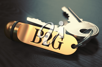 B2G - Business to Government - Concept. Keys with Golden Keyring on Black Wooden Table. Closeup View, Selective Focus, 3D Render. Toned Image.