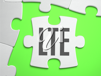 LTE - Long Term Evolution - Jigsaw Puzzle with Missing Pieces. Bright Green Background. Close-up. 3d Illustration.