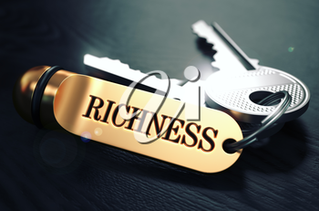 Keys and Golden Keyring with the Word Richness over Black Wooden Table with Blur Effect. Toned Image.