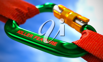 Red Ropes Connected by Green Carabiner Hook with Text Killer Feature. Selective Focus.