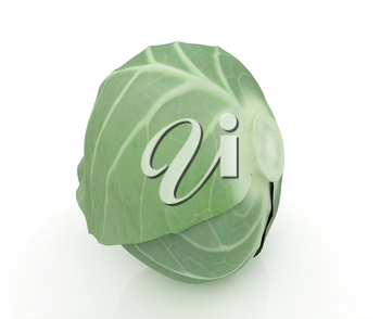 Green cabbage on a white background