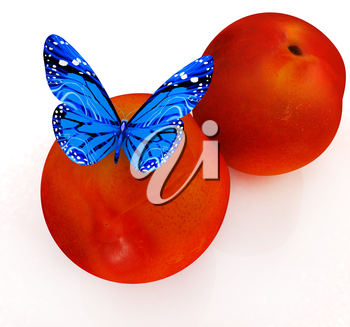 Blue butterflys on a fresh peaches on a white background
