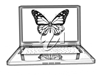 butterfly on a notebook on a white background