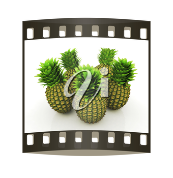 pineapples on a white background. The film strip