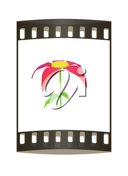 Flower icon on a white background. The film strip
