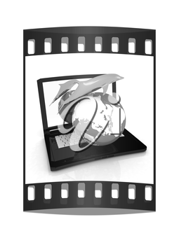Golden Dolphin from the laptop. Global concept. The film strip