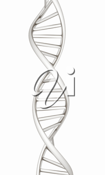 DNA structure model on white
