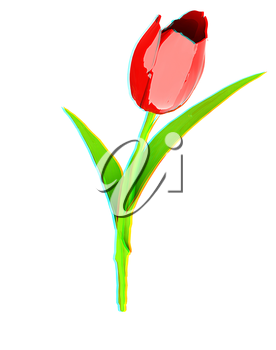 Tulip flower. 3D illustration. Anaglyph. View with red/cyan glasses to see in 3D.