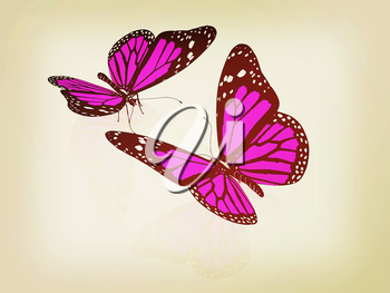 Butterfly on a white background. 3D illustration. Vintage style.