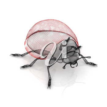 Ladybird on a white background. 3D illustration.
