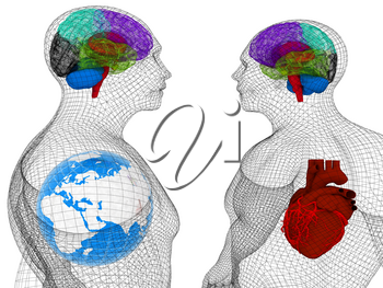 Wire human body model with heart and brain in x-ray. 3d render. Global medical concept with Earth. 3d render