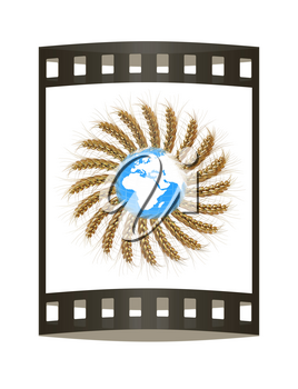 3D illustration of a golden wreath made of wheat spikelets with Earth. Design element. 3d render. Film strip.