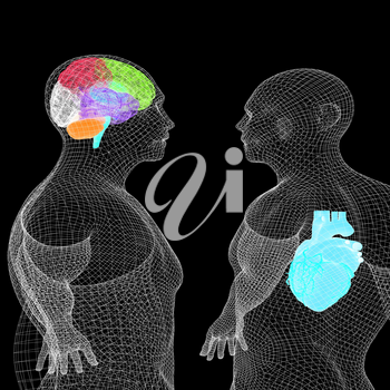 Wire human body model with heart and brain in x-ray. 3d render. On a black background.