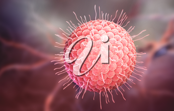 Varicella zoster virus or varicella-zoster virus (VZV) is one of eight herpesviruses known to infect humans and vertebrates. 3D illustration
