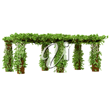 Old fashioned pergola on the tall brick pillars with ivy plant on it