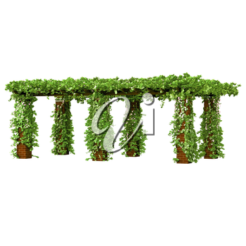 Outdoor pergola on the brick columns with wood on it and very curly ivy plant